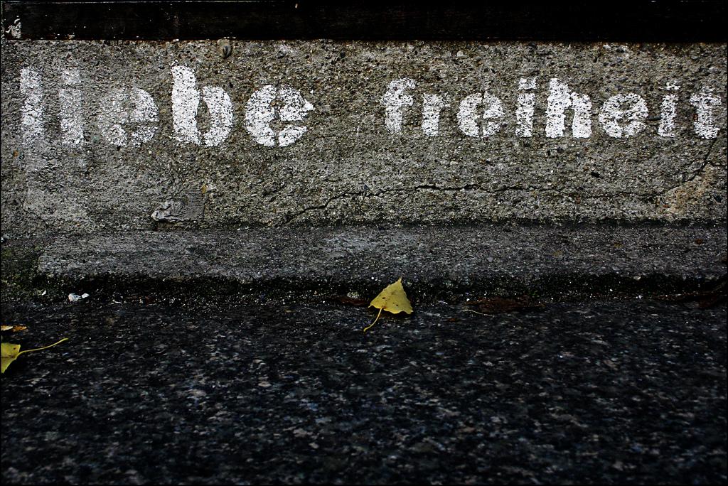 CC-BY-NC-ND Steffi Reichert